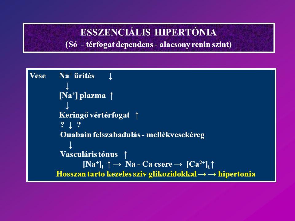 ESSZENCIÁLIS HIPERTÓNIA (Só - térfogat dependens - alacsony renin szint)