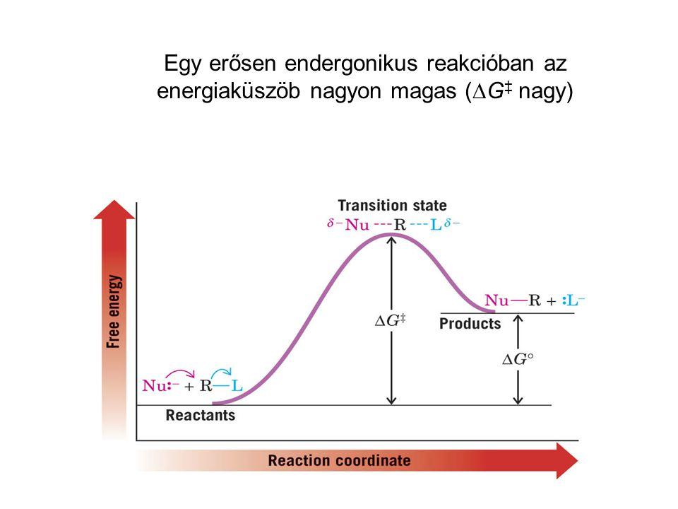 Egy erősen endergonikus reakcióban az energiaküszöb nagyon magas (DG‡ nagy)