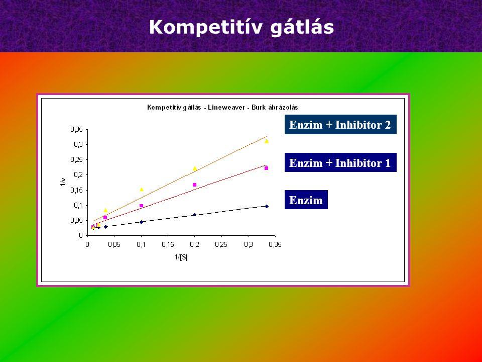 Kompetitív gátlás Enzim + Inhibitor 2 Enzim + Inhibitor 1 Enzim