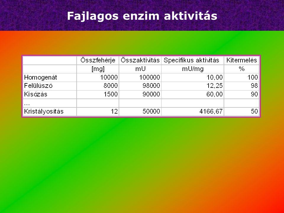 Fajlagos enzim aktivitás