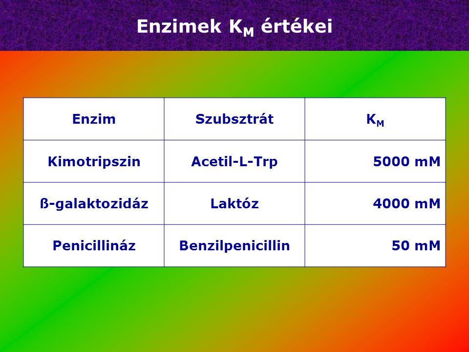 Enzimek KM értékei Enzim Szubsztrát KM Kimotripszin Acetil-L-Trp