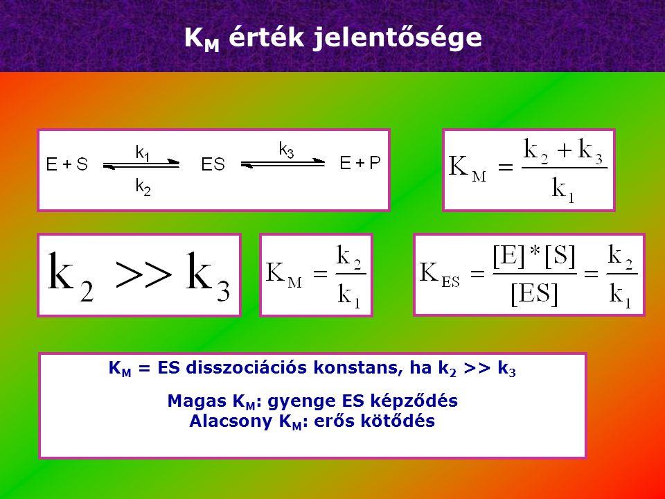 KM érték jelentősége KM = ES disszociációs konstans, ha k2 >> k3