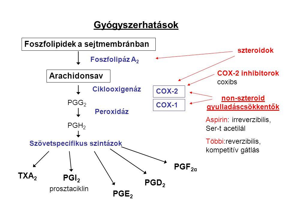 non-szteroid gyulladáscsökkentők Szövetspecifikus szintázok