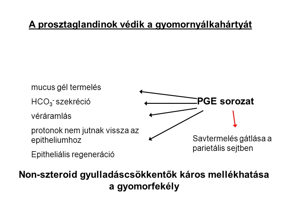 A prosztaglandinok védik a gyomornyálkahártyát