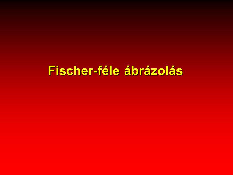 Fischer-féle ábrázolás