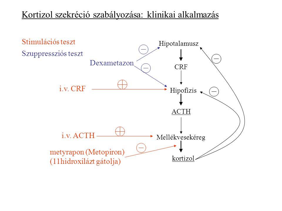 Kortizol szekréció szabályozása: klinikai alkalmazás