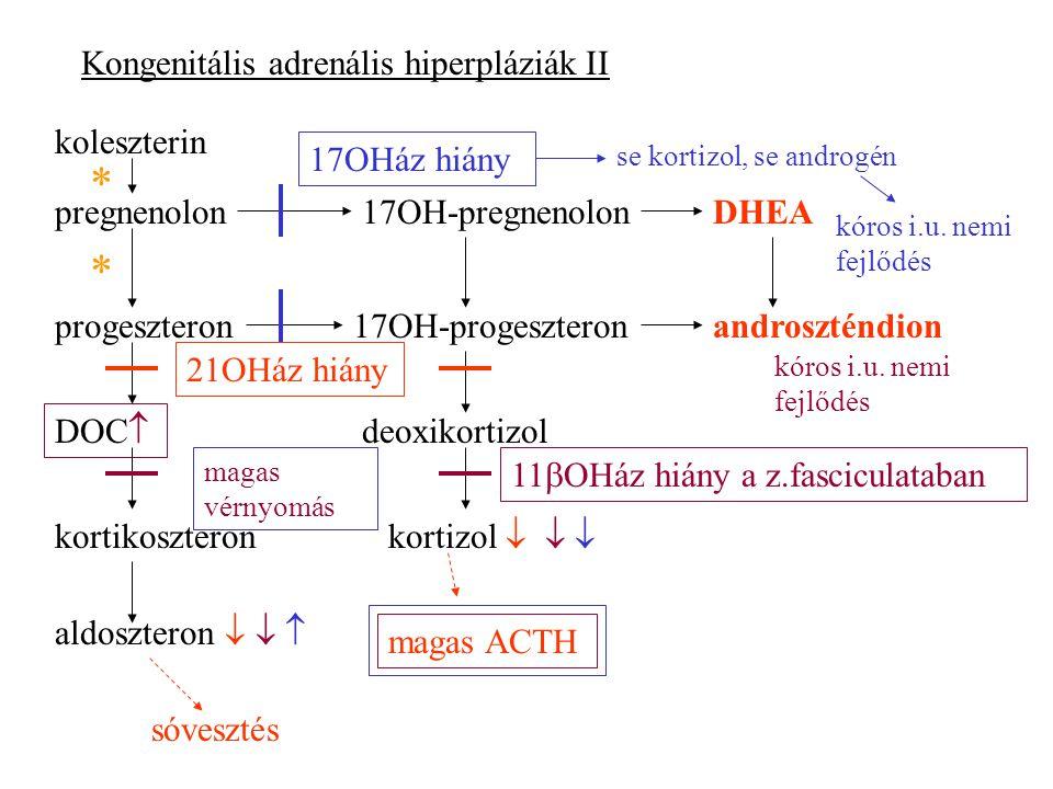 * * Kongenitális adrenális hiperpláziák II koleszterin 17OHáz hiány