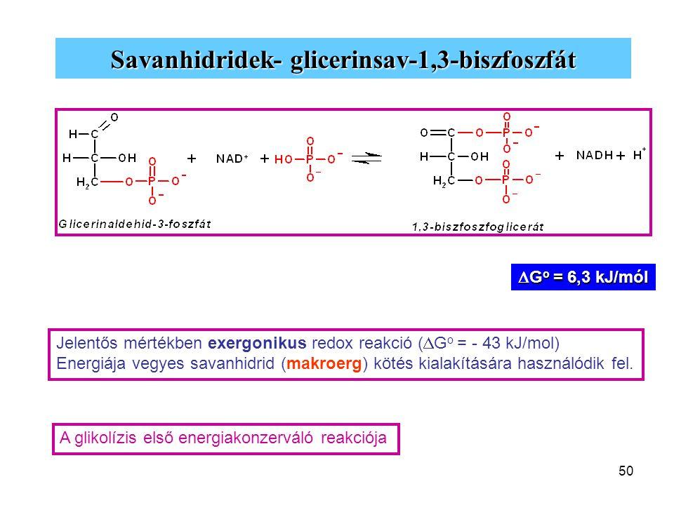 Savanhidridek- glicerinsav-1,3-biszfoszfát