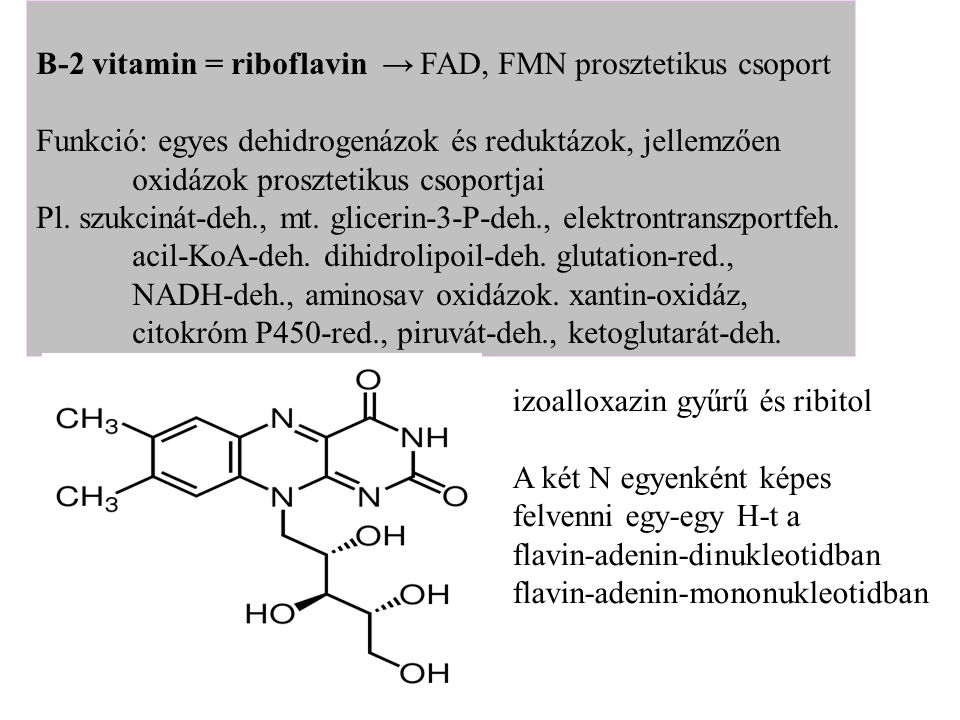 B-2 vitamin = riboflavin → FAD, FMN prosztetikus csoport