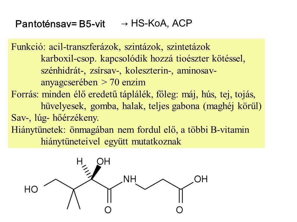 Pantoténsav= B5-vit → HS-KoA, ACP. Funkció: acil-transzferázok, szintázok, szintetázok.