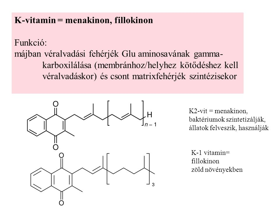 K-vitamin = menakinon, fillokinon