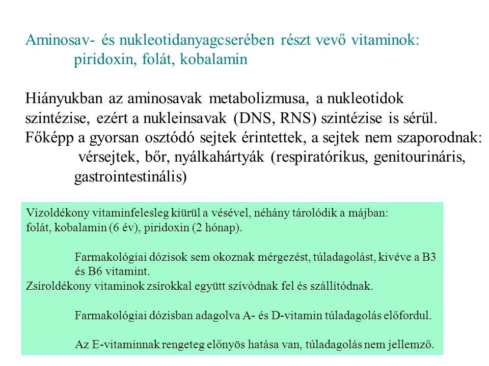 Aminosav- és nukleotidanyagcserében részt vevő vitaminok: