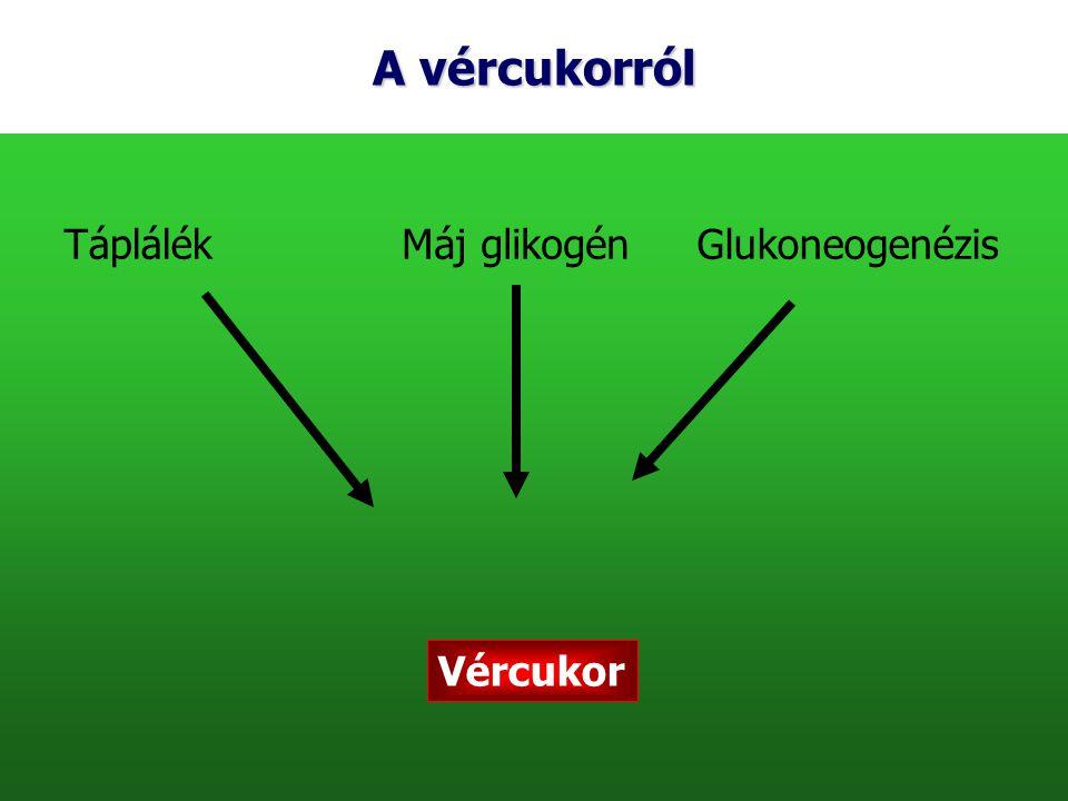 A vércukorról Táplálék Máj glikogén Glukoneogenézis Vércukor