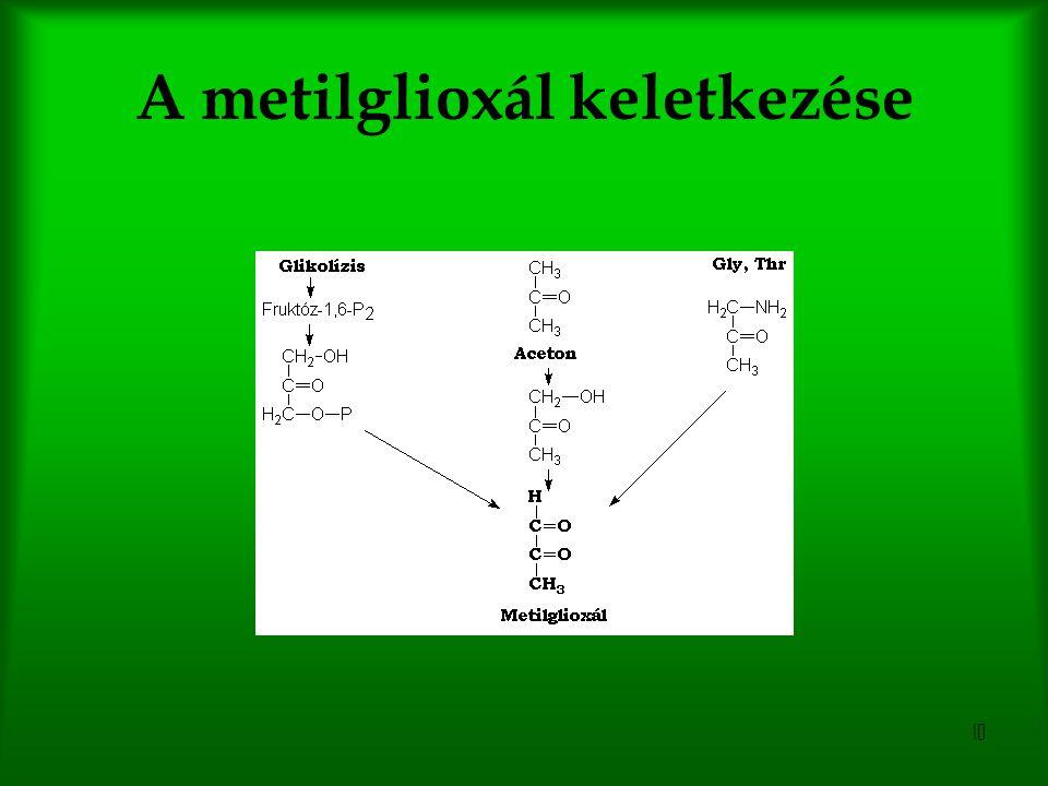 A metilglioxál keletkezése