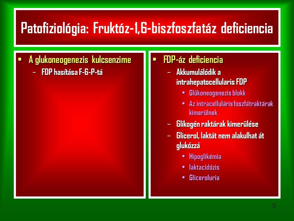 Patofiziológia: Fruktóz-1,6-biszfoszfatáz deficiencia