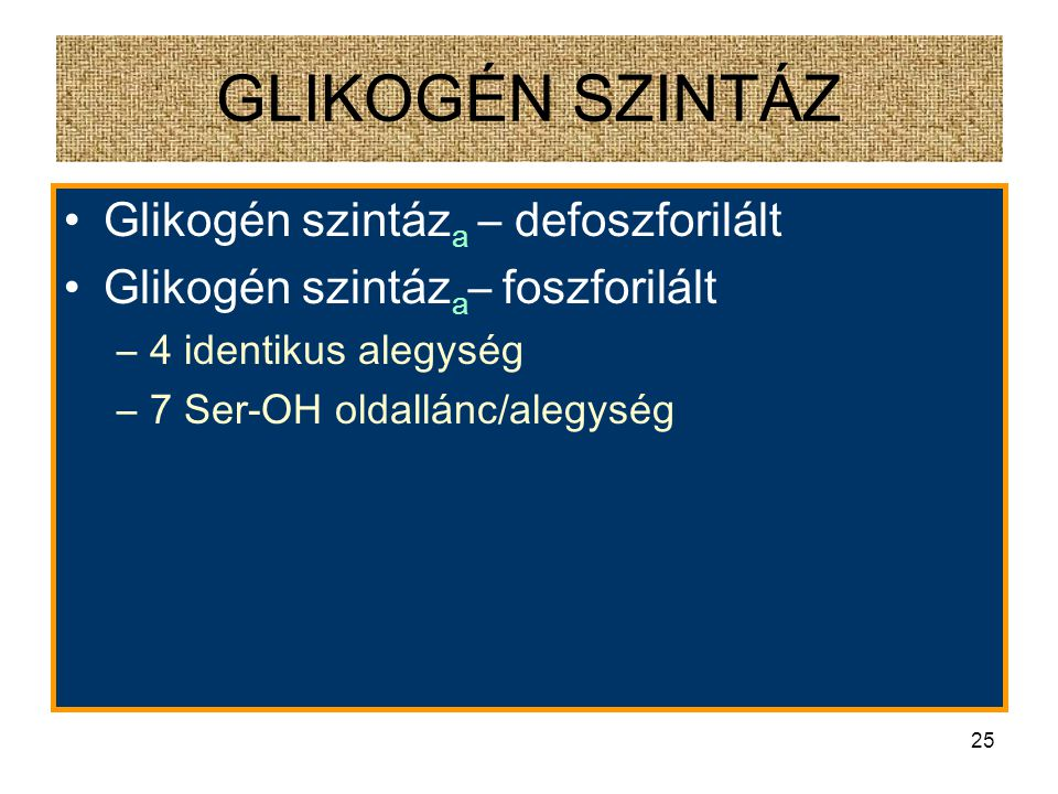 GLIKOGÉN SZINTÁZ Glikogén szintáza – defoszforilált