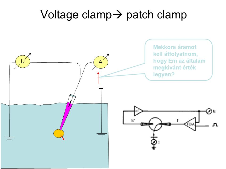 Voltage clamp patch clamp