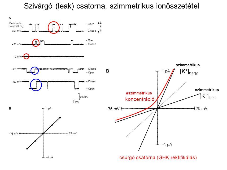 Szivárgó (leak) csatorna, szimmetrikus ionösszetétel