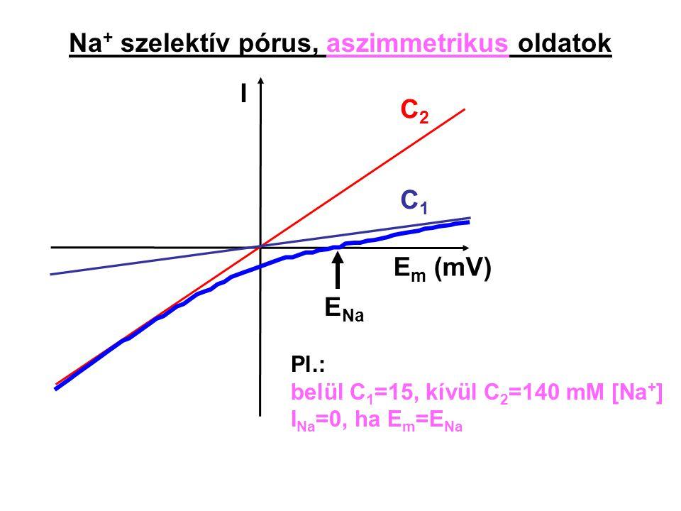 Na+ szelektív pórus, aszimmetrikus oldatok