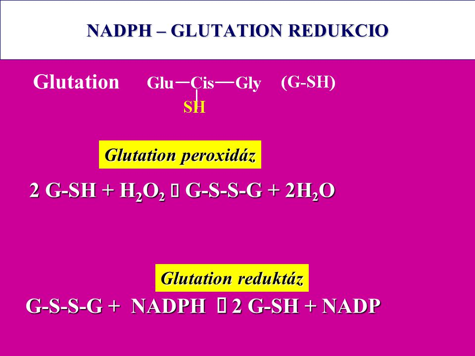 NADPH – GLUTATION REDUKCIO