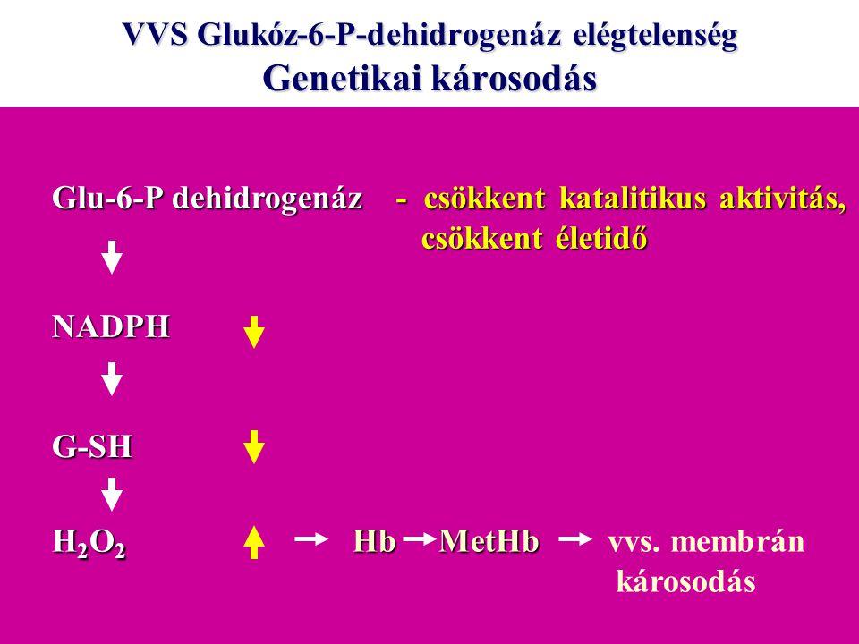 VVS Glukóz-6-P-dehidrogenáz elégtelenség Genetikai károsodás