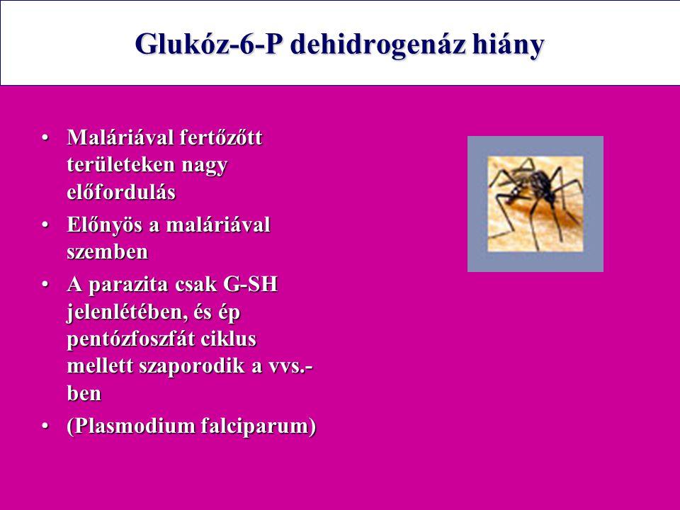 Glukóz-6-P dehidrogenáz hiány