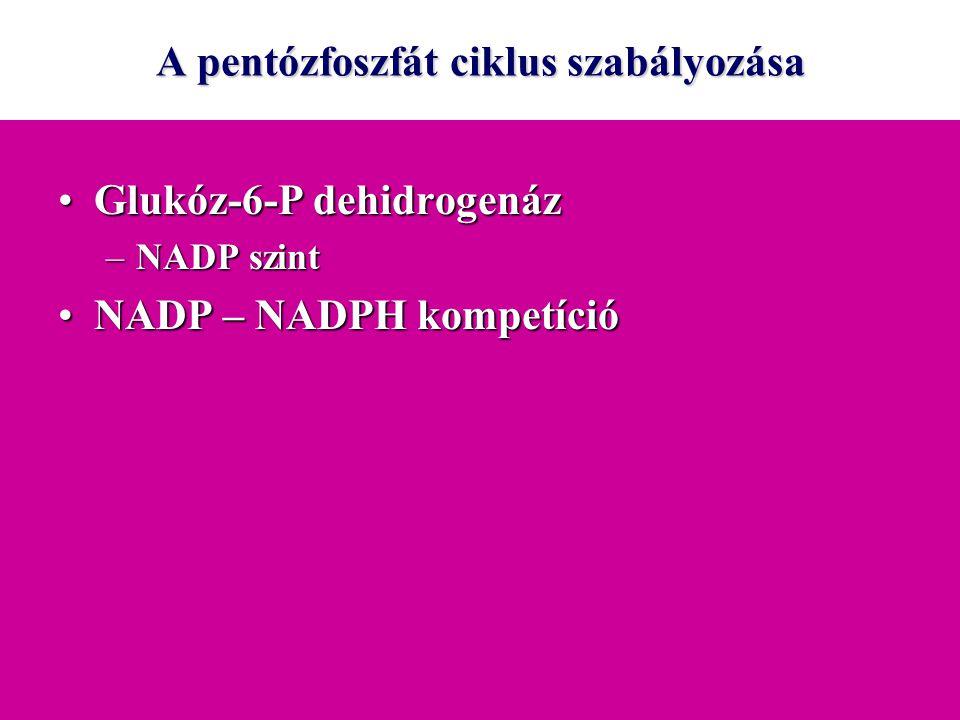 A pentózfoszfát ciklus szabályozása