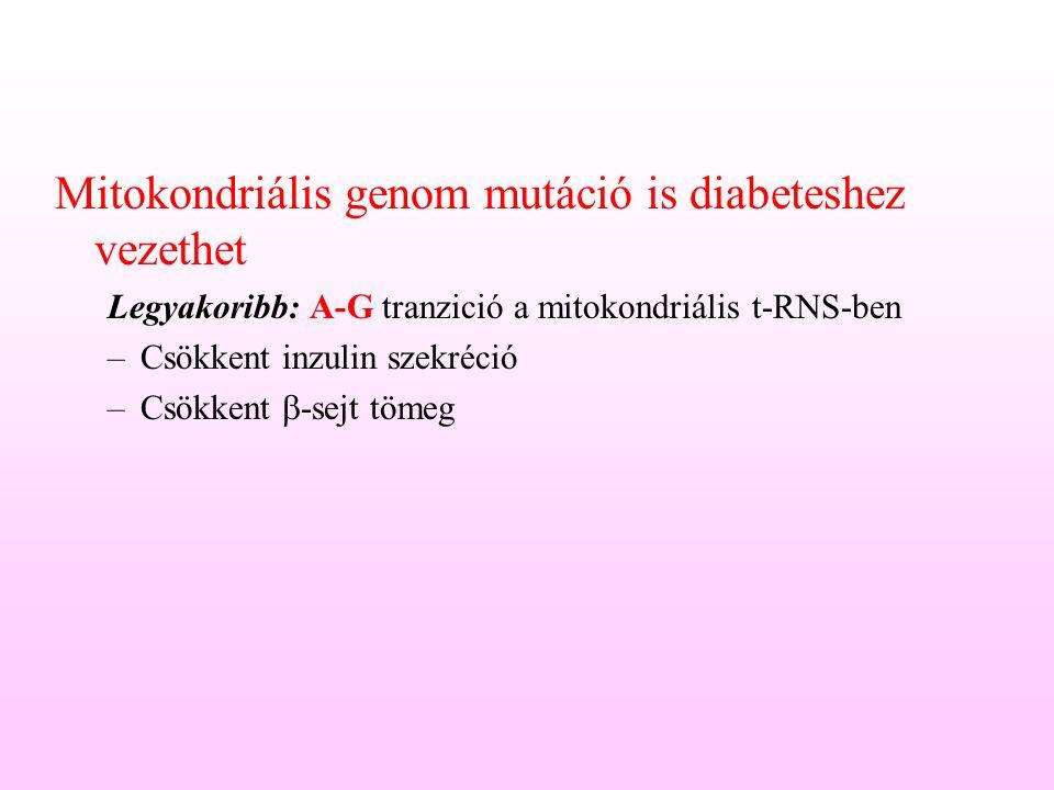 Mitokondriális genom mutáció is diabeteshez vezethet
