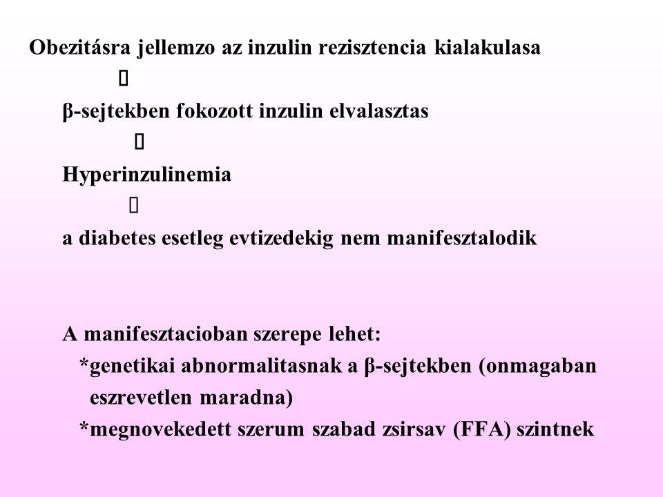 Obezitásra jellemzo az inzulin rezisztencia kialakulasa