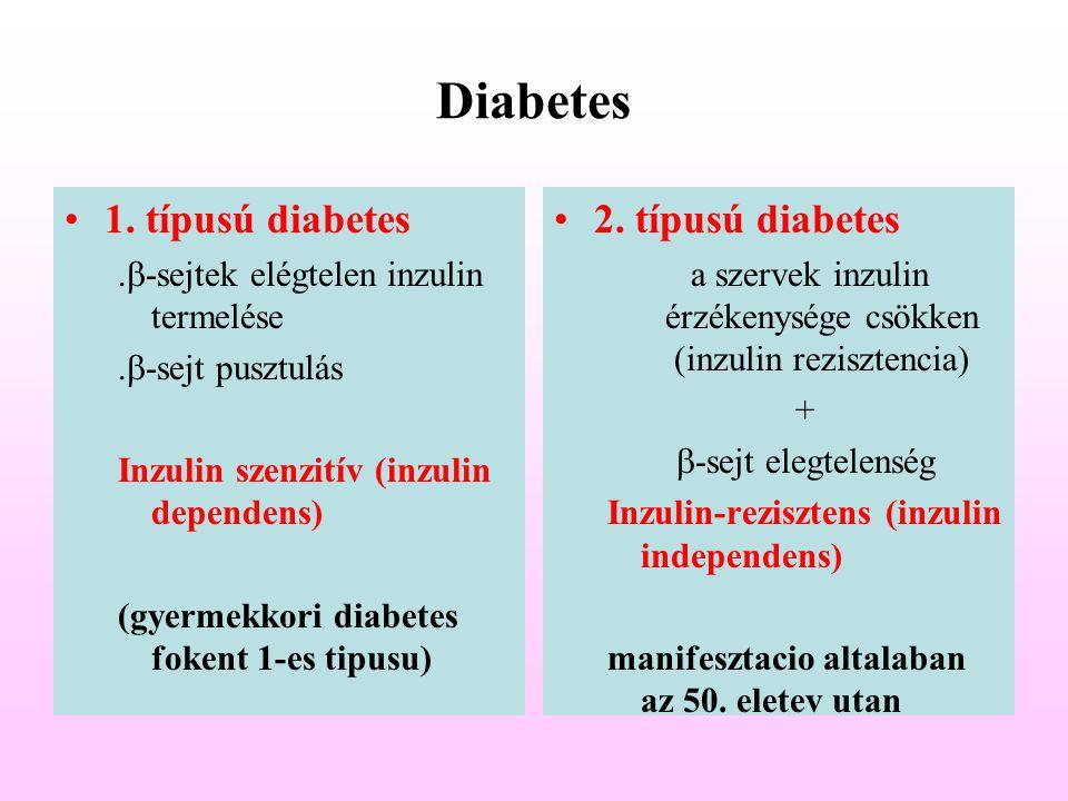 a szervek inzulin érzékenysége csökken (inzulin rezisztencia)