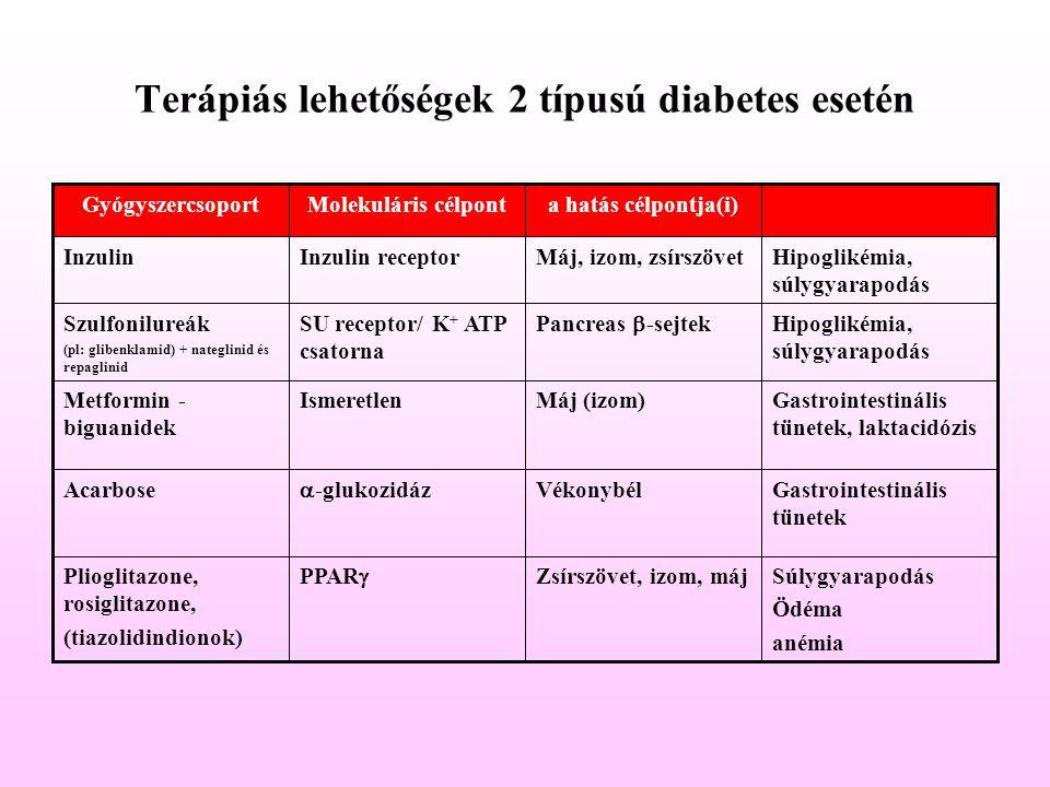 Terápiás lehetőségek 2 típusú diabetes esetén