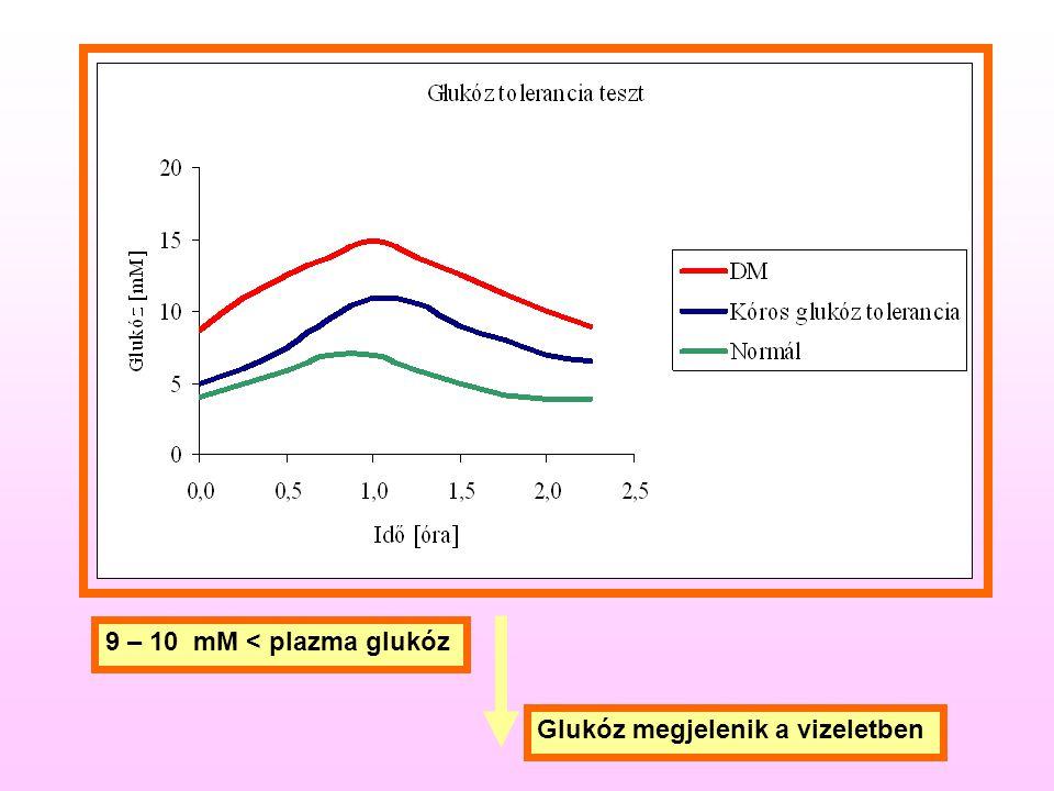 9 – 10 mM < plazma glukóz Glukóz megjelenik a vizeletben
