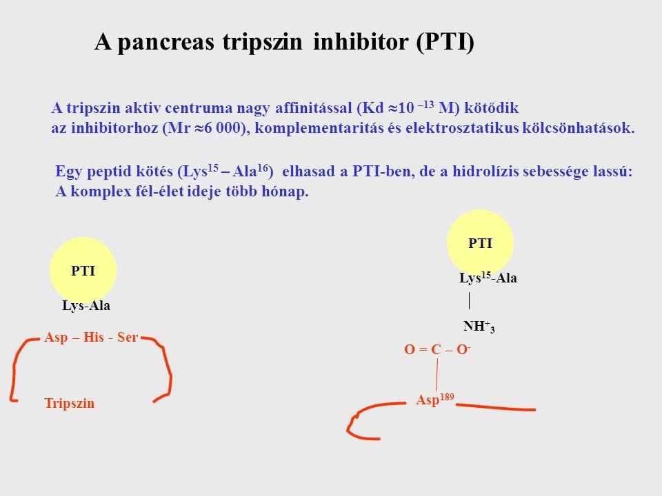 A pancreas tripszin inhibitor (PTI)