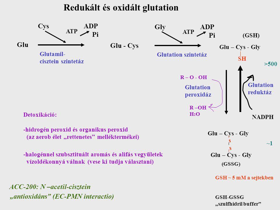Redukált és oxidált glutation