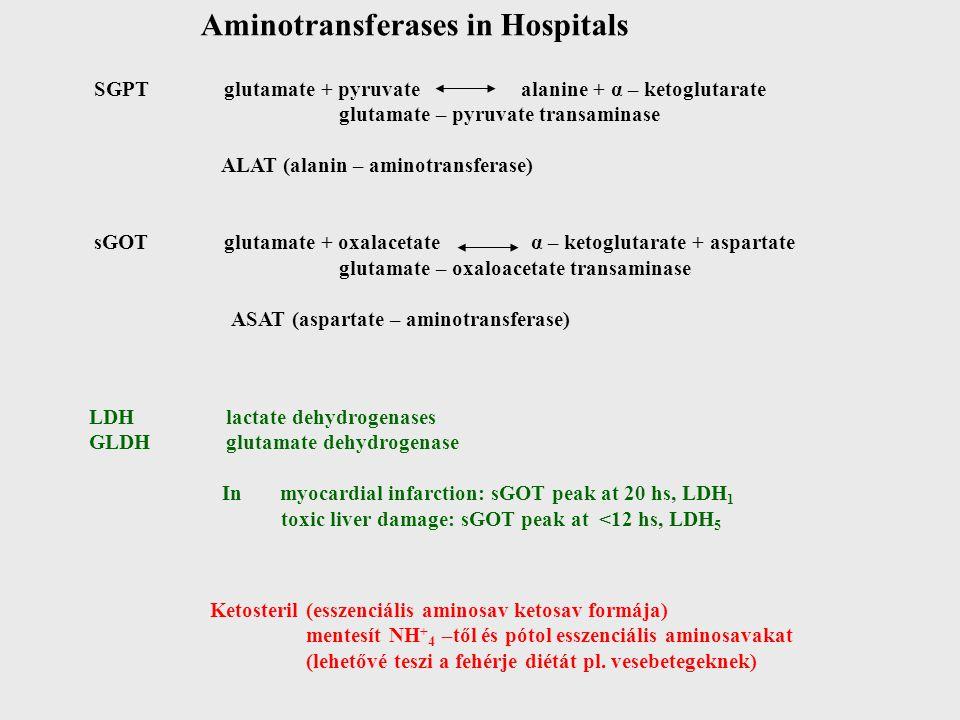 Aminotransferases in Hospitals