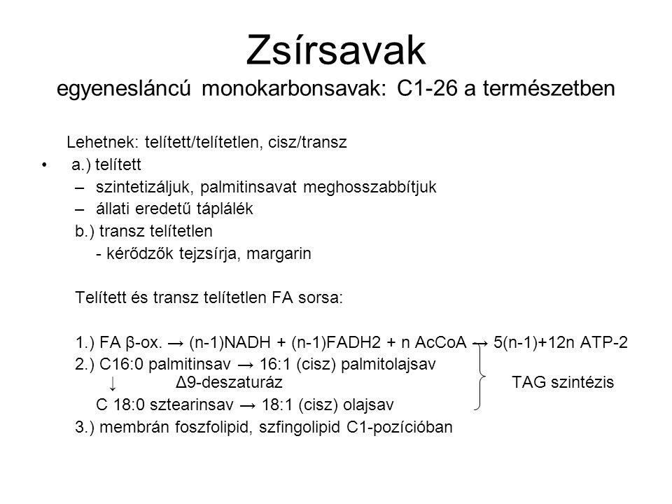 Zsírsavak egyenesláncú monokarbonsavak: C1-26 a természetben