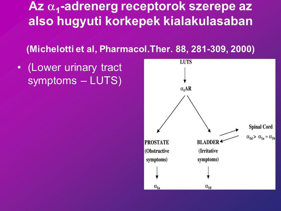 Az a1-adrenerg receptorok szerepe az also hugyuti korkepek kialakulasaban (Michelotti et al, Pharmacol.Ther. 88, 281-309, 2000)