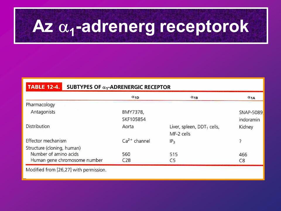 Az a1-adrenerg receptorok