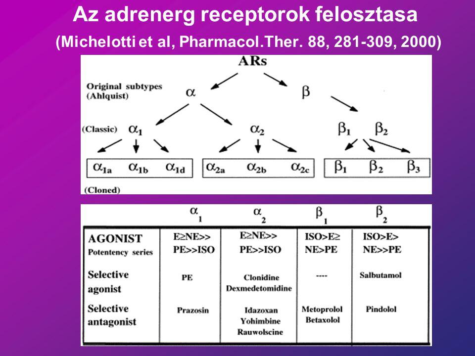 Az adrenerg receptorok felosztasa (Michelotti et al, Pharmacol. Ther