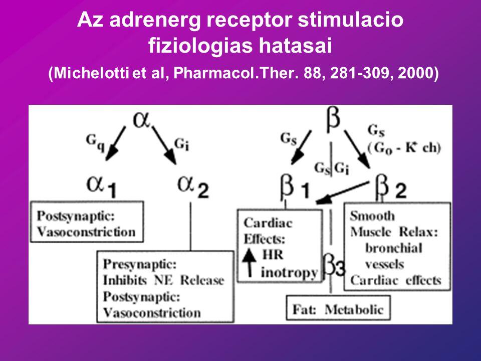 Az adrenerg receptor stimulacio fiziologias hatasai (Michelotti et al, Pharmacol.Ther.