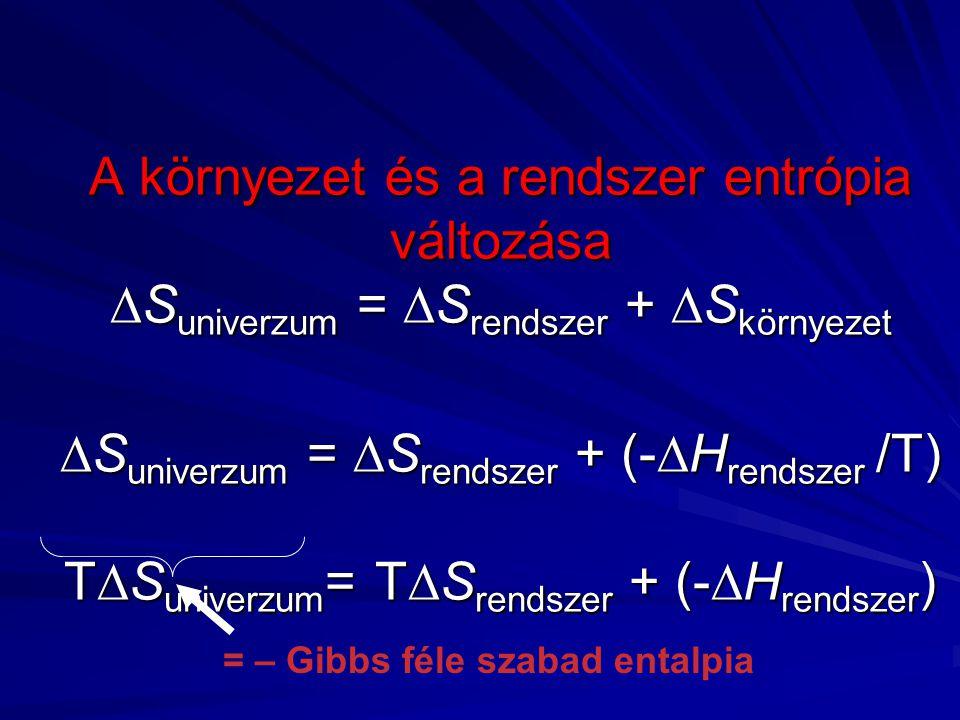 A környezet és a rendszer entrópia változása Suniverzum = Srendszer + Skörnyezet Suniverzum = Srendszer + (-Hrendszer /T) TSuniverzum= TSrendszer + (-Hrendszer)