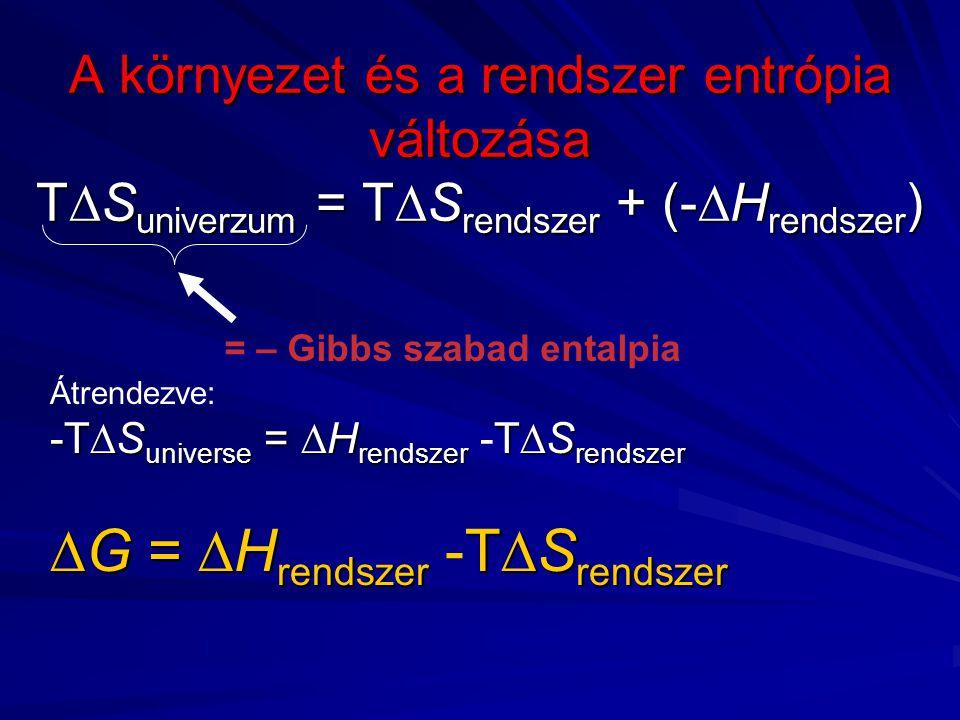 G = Hrendszer -TSrendszer
