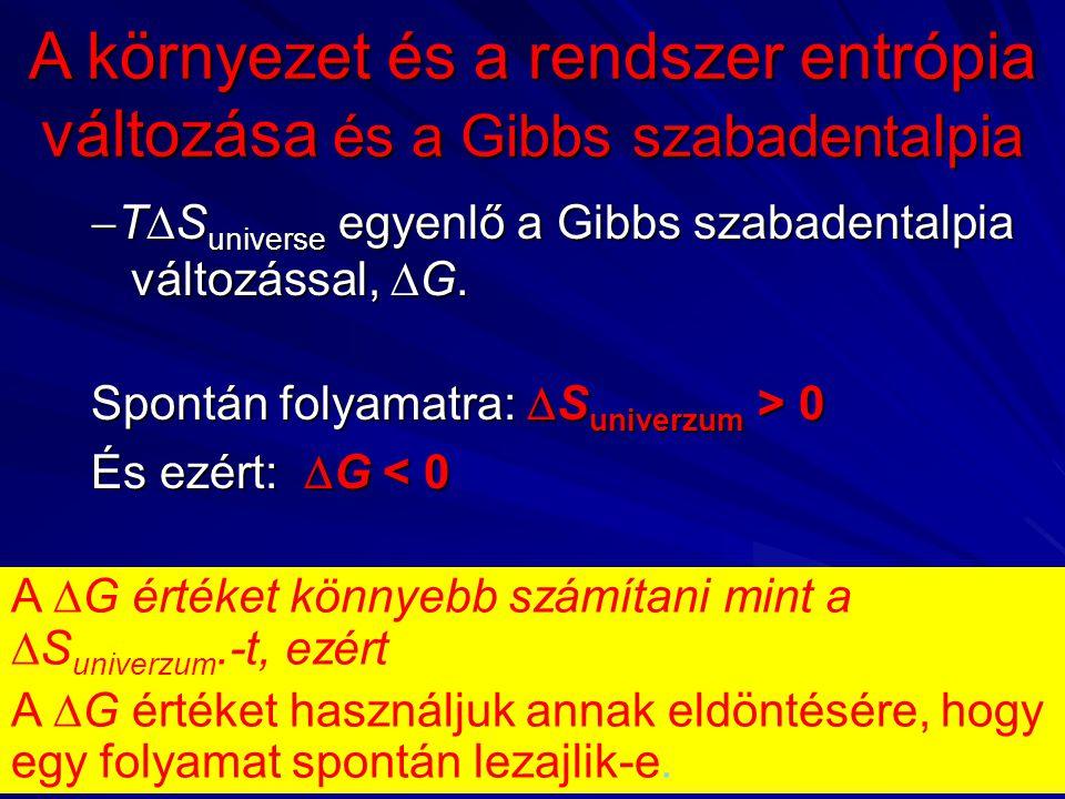 A környezet és a rendszer entrópia változása és a Gibbs szabadentalpia