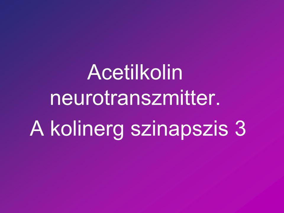 Acetilkolin neurotranszmitter. A kolinerg szinapszis 3