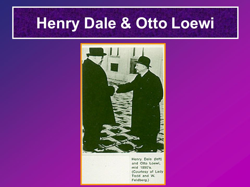 Henry Dale & Otto Loewi
