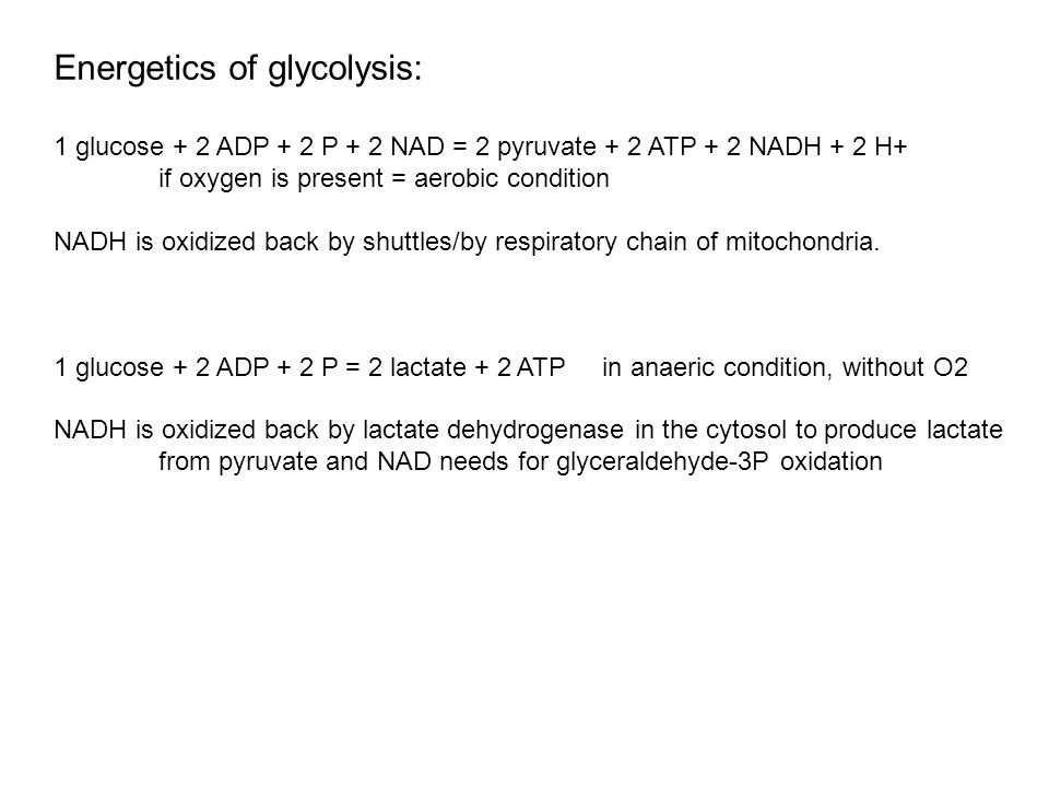 Energetics of glycolysis: