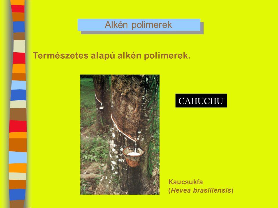 Alkén polimerek Természetes alapú alkén polimerek. CAHUCHU Kaucsukfa