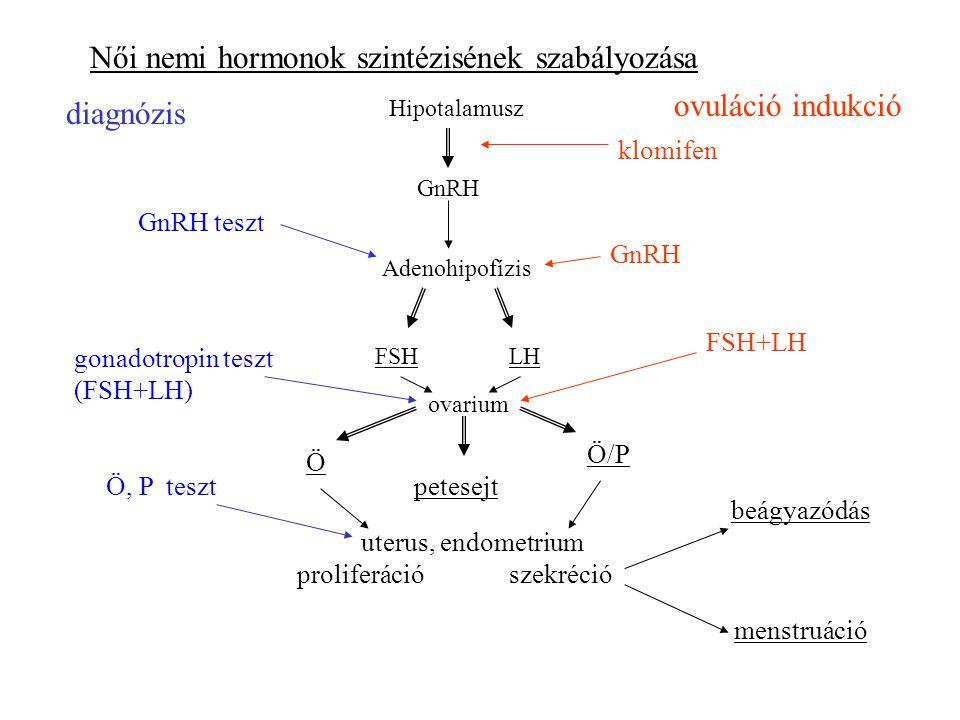 Női nemi hormonok szintézisének szabályozása
