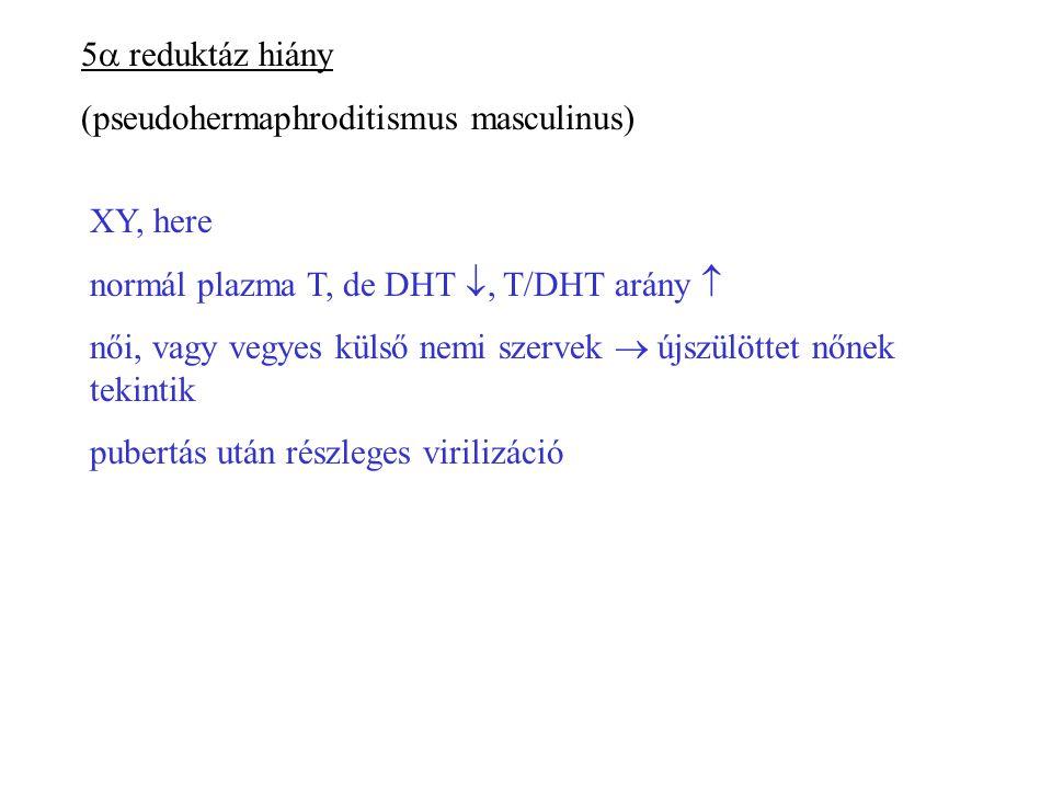 5a reduktáz hiány (pseudohermaphroditismus masculinus) XY, here. normál plazma T, de DHT , T/DHT arány 