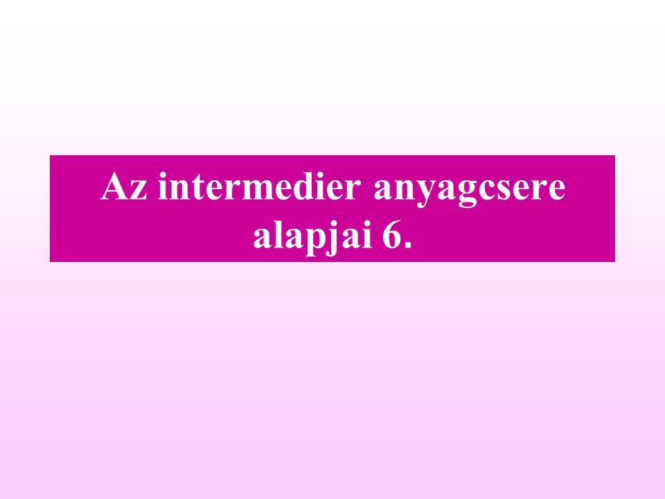 Az intermedier anyagcsere alapjai 6.